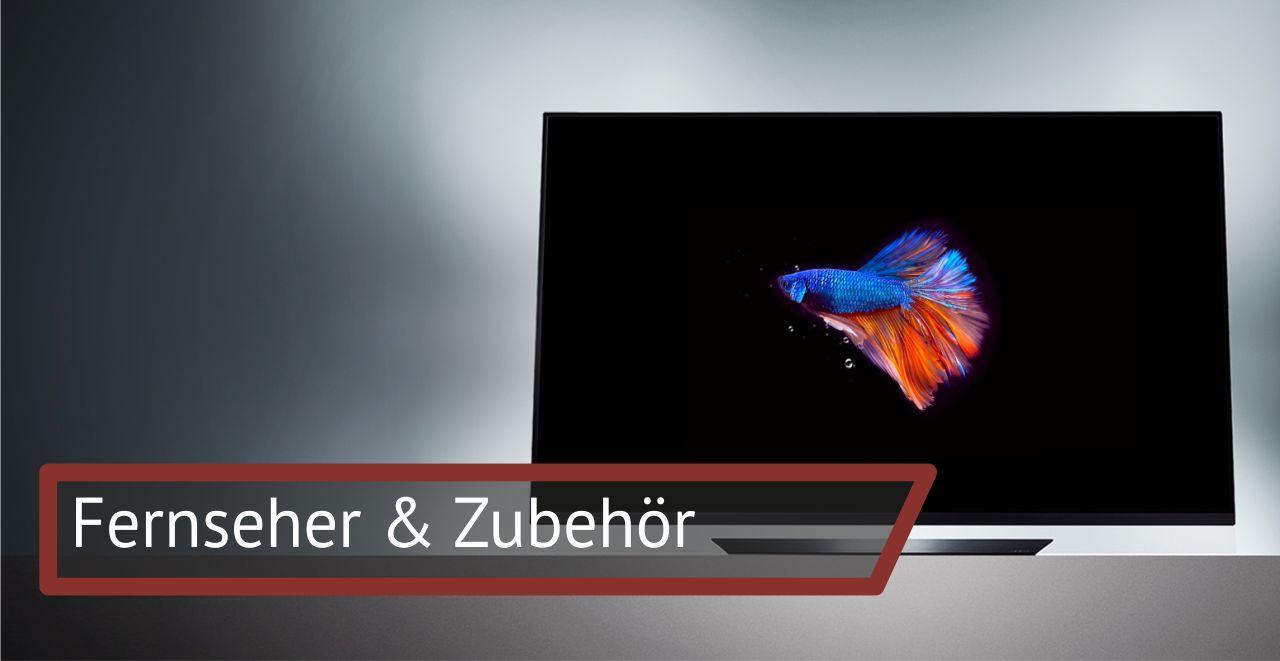 Fernseher & Zubehör: Fernsehen  Beamer  DVB-Receiver  Home Video